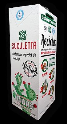 Contenedor Suculenta Lateral 1.png