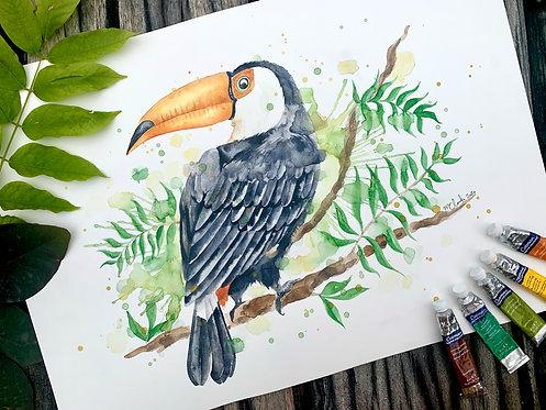 A3 Toucan