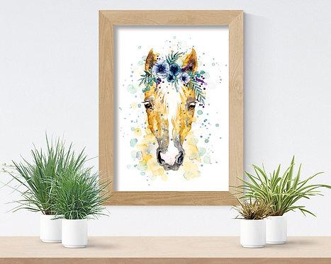Percy the Pony