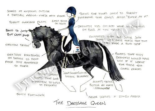 The Dressage Queen