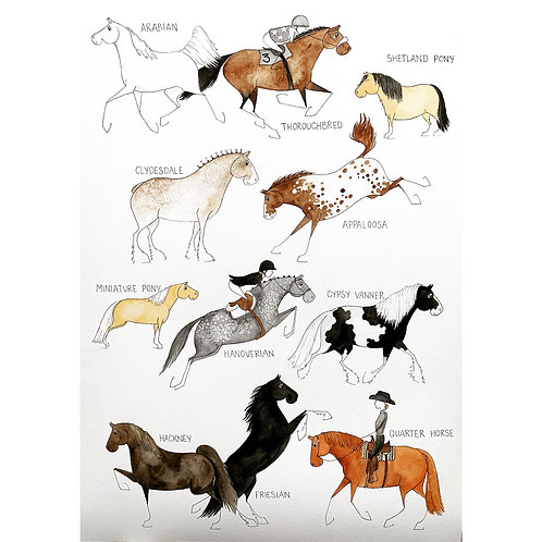 Horse Breeds Print