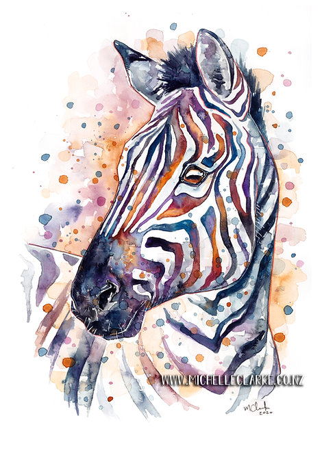 A3 Zebra