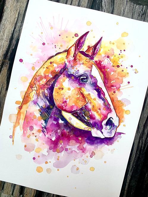 A3 Coloured Horse
