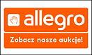 allegro_banner.png