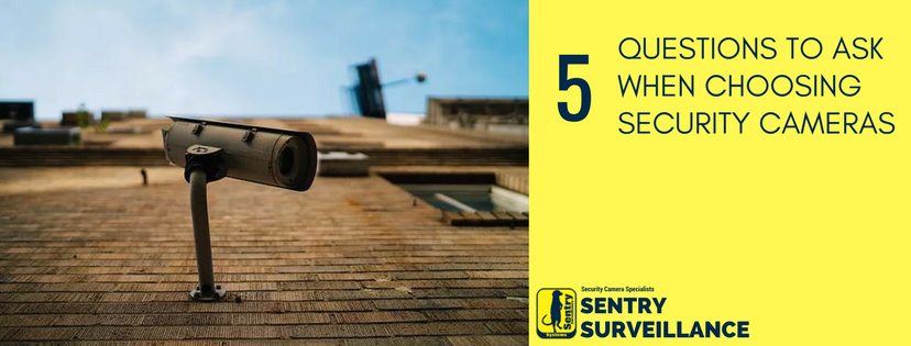 5 Questions To Ask When Choosing Security Cameras
