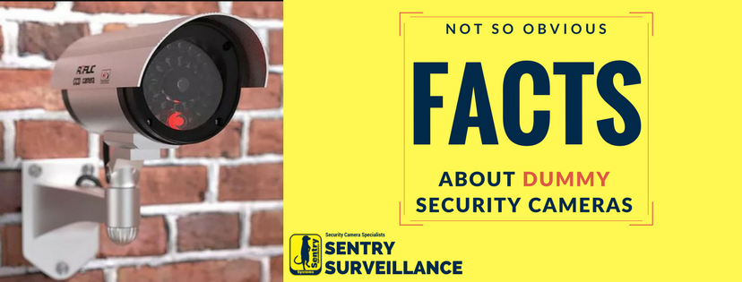 (Not So Obvious) FACTS about DUMMY Security Cameras