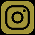 instagram ESS.png