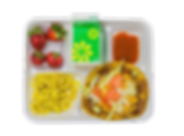 food tray 2.png