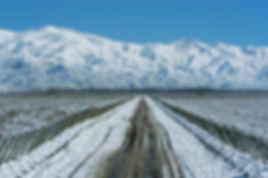 Snowed_Path_Andes.jpg