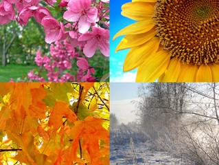 Understanding your Seasons