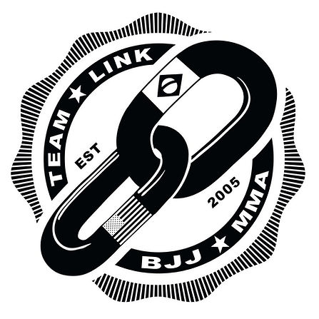 Team Link New Logo BJJ and MMA in Western Mass