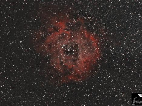 C49 Nebulosa Roseta