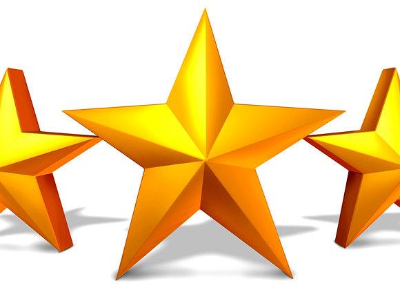 5 STAR SPONSORS