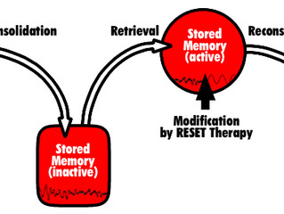 RESET Therapy: An Alternative Treatment for Addiction