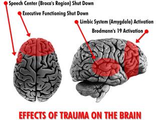 The Neuronal Circuit of PTSD