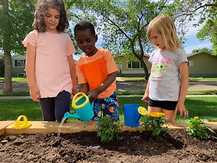 BLP Raised Garden.jpg