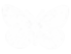 ButterflyLogo_final-01_edited.png