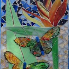 Butterflies in Paradise