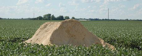 Gips-rolniczy-zastosowanie-w-rolnictwie-