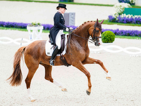 Are dressage riders suffering more greatly from mental health issues than other equestrians?