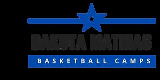 DM Logo- Final.png