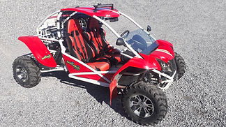 buggy sport_web.jpg