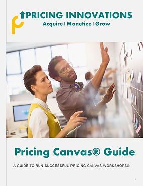 Pricing Canvas Guide by Pricing Innovati