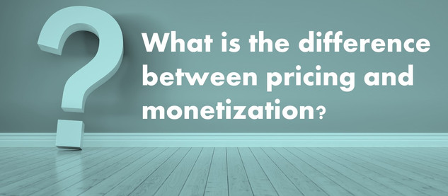 What is the difference between pricing and monetization?