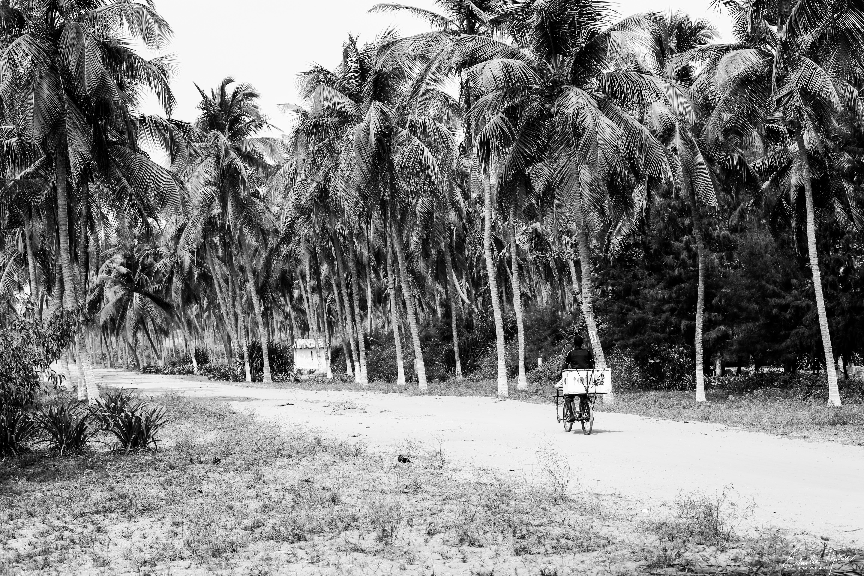 Houndodji (Bénin)