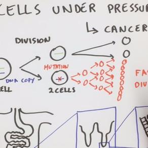Cells Under Pressure!