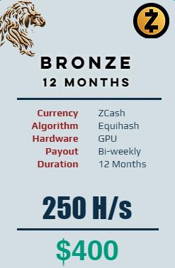 Zcash - 12 Months @ 250 H/s