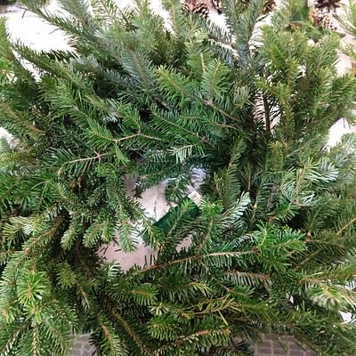 2018 Wreath Workshop