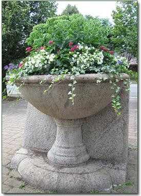 photo-montenegro-planter