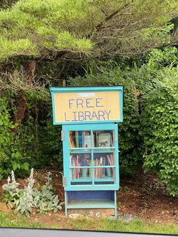 wvt-free library-mnc
