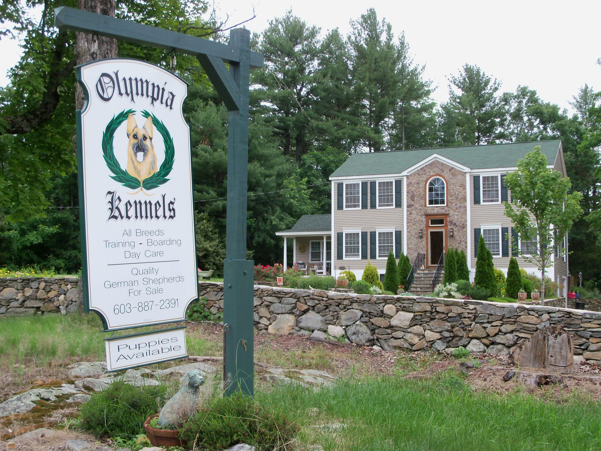 A virtual tour of Olympia Kennels
