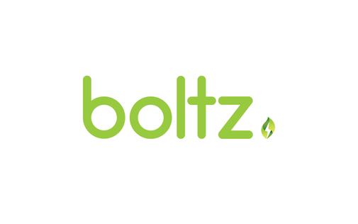 Boltz Secondary Logo