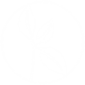 KCM_Logo_White Abstract Mark.png