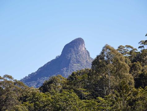 Wollumbin (Mt Warning)