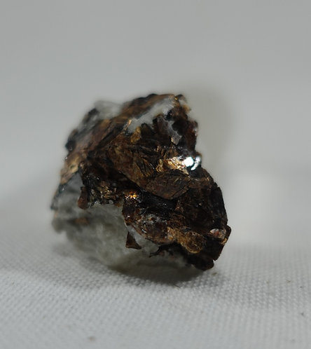 Small Rough Astrophyllite