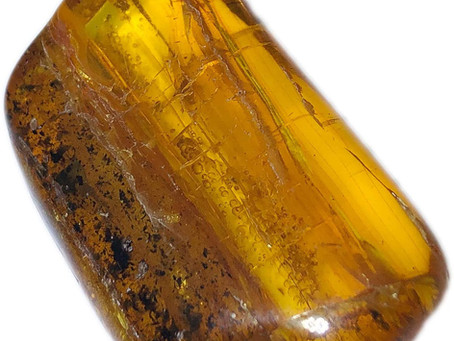 Stone of The Month : Amber