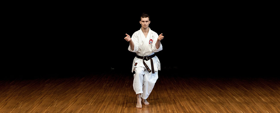 Karate_Ippon_Shobu_2015-06-14_194__auto_