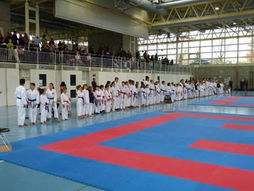 Erste Turniererfahrungen für Nachwuchskaratekas am Turnier der Shinsei Kan Karateschule in Lenzburg