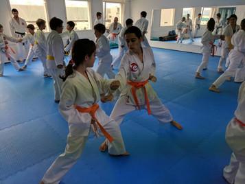 Lehrreiches Wochenendtraining für die Karatekas der Shinsei Kan Karateschule