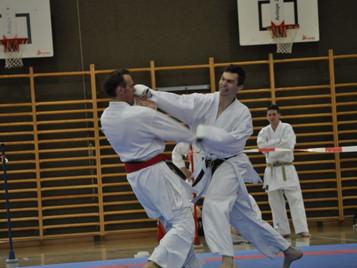 Ilija Letic von der Shinsei Kan Karateschule wird Ippon Shobu Schweizermeister im Team