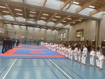 Erfolgreiches Karate Team der Shinsei Kan Karateschule an der Aargauermeisterschaft
