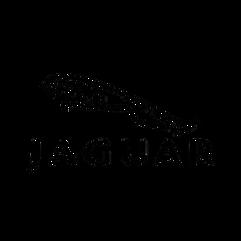 56-562200_top-18-jaguar-logo-items-jagua