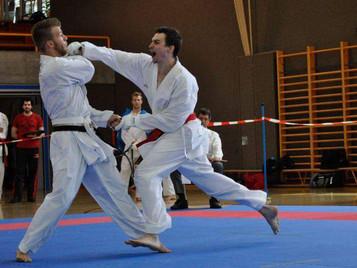 Ilija Letic von der Shinsei Kan Karateschule Lenzburg erkämpft sich Shobu Ippon Schweizermeistertite