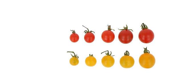Micro tomaatjes