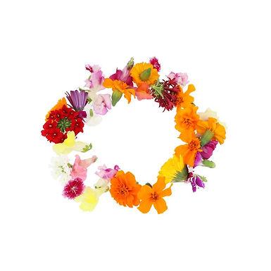Eetbare bloemen mix