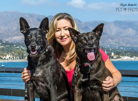 Desafio Ensaio Pet na Califórnia!